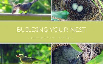 Build Your Nest [sanguine seeds]