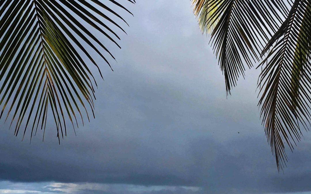 Dark Cloud Overhead?
