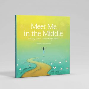 Meet me in the middle book